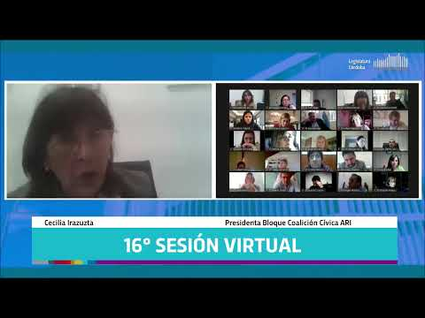 Decimosexta Sesión Virtual - 142 Período Legislativo
