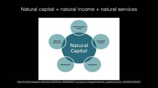 1.4 Sustainability and sustainable development
