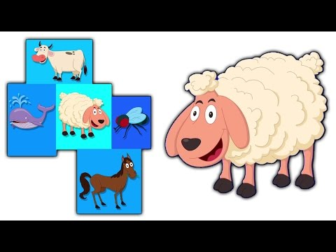 animali suono canzone | canzoni per capretti | Nursery Rhymes | Children Songs | Animal Sound Song