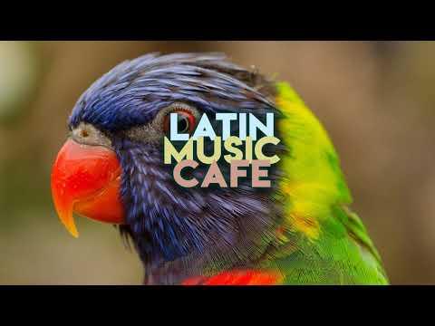 SerdarAydın - Ben Fero - Babafingo Roman Havası Ritim Remix  DJ MUSTİ | Latin Music Cafe ☕