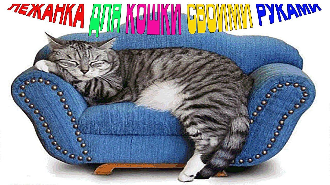 Как самому сшить лежанку для кошек фото 626