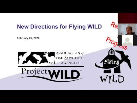 New Directions Flying WILD