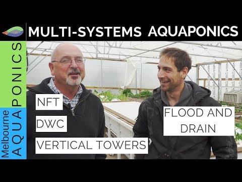 Multisystems Aquaponics