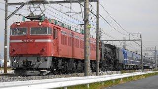 "〔4K UHD|cc〕JR東日本・上越線:新前橋~井野駅間、EF81 97+SL""C61 20""+オヤ12 1+12系客車4B/ 「SLおが」返却回送シーン。《配9742レ》"