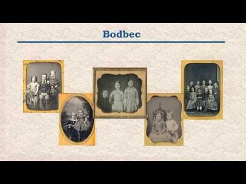 Endoline Brickwall Genealogy Training