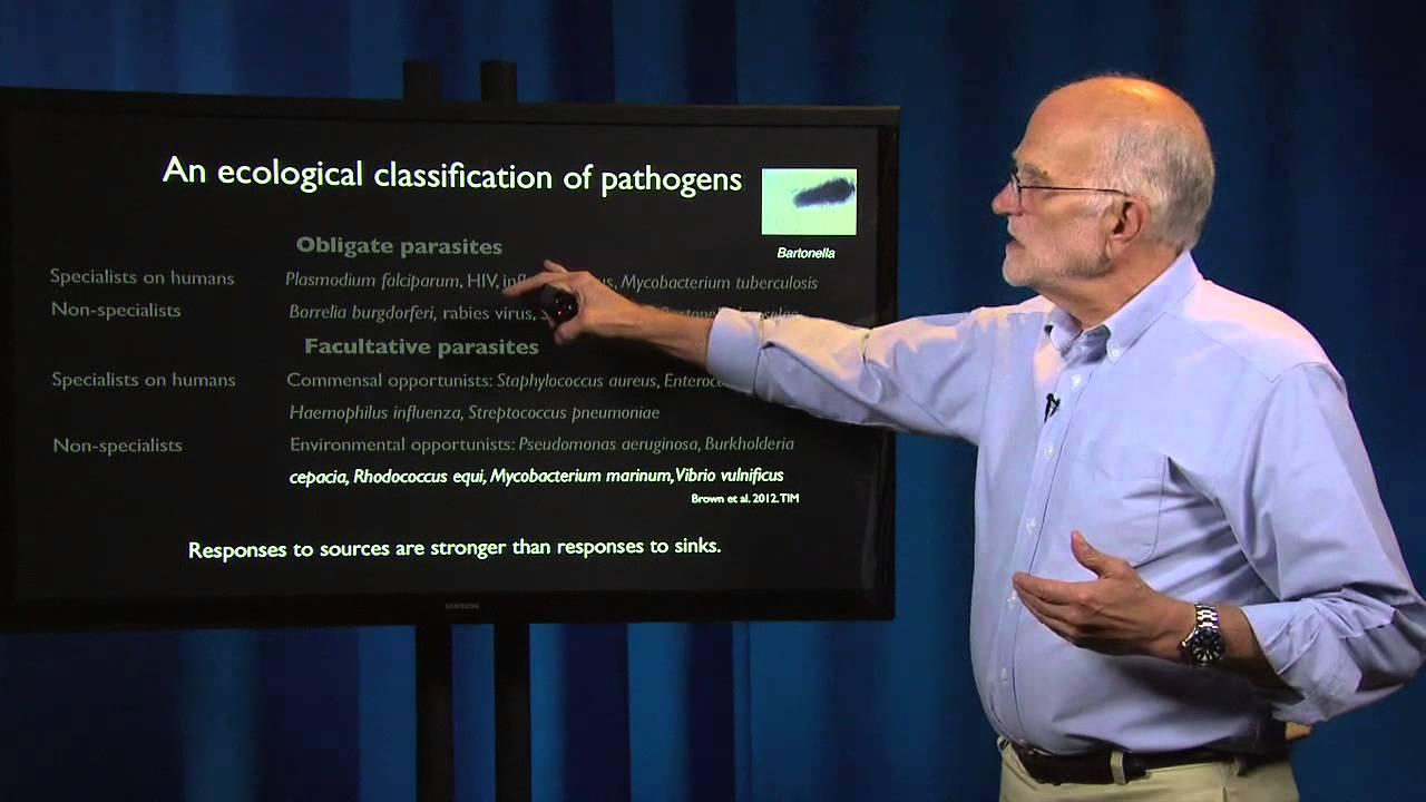 5.2 - Pathogen evolution: Virulence 2