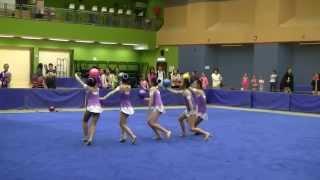 2014 全港學界藝術體操比賽  集體5人球