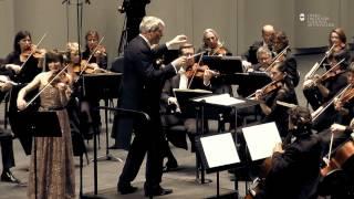 Beethoven / Concerto pour violon et orchestre - Dorota Anderszewska - extrait