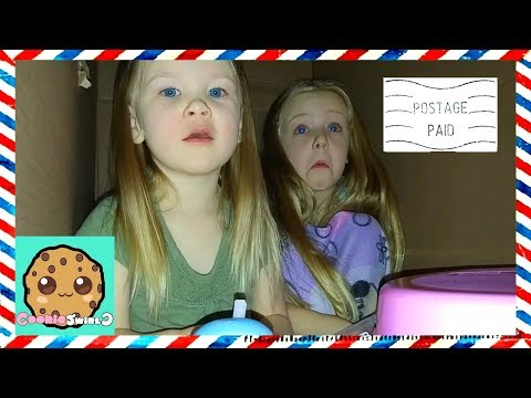 I Mailed Myself in a Box to Cookie Swirl C with Little Sister Met Evan on Way to Ryan Toy Review