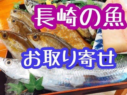 漁 連 鮮魚 ボックス 県 長崎