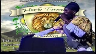 Sizzla - Rasta Nah Gwan So - Herb Family Riddim - More Life Prod & VIS Records - May 2014