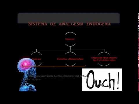 FISIOLOGIA DEL DOLOR FACIL