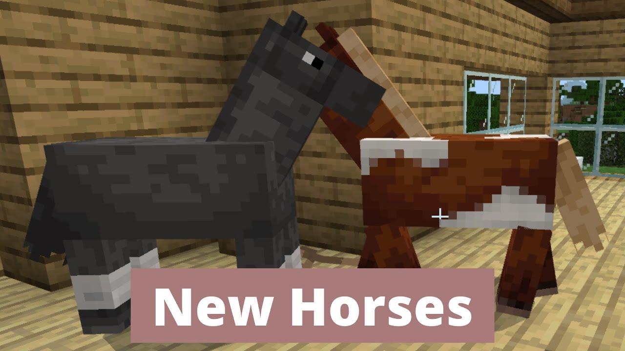 New Horses! Minecraft ep 14 - YouTube