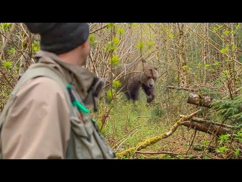 Fishermen Run Into Grizzly Bear and Sight Fish for Steelhead | Captain Quinn