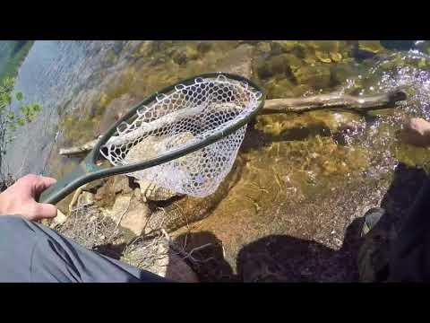 Ralph Price Reservoir Fishing (Button Rock Dam)