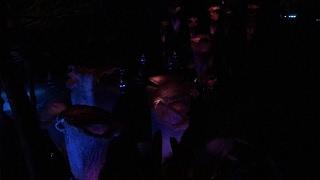 Pandora - World of Avatar - Night Live Stream 5-27-17 thumbnail