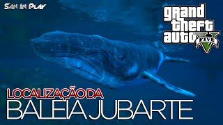 GTA V Nova Geração: Localização da Baleia Jubarte e dos Golfinhos!