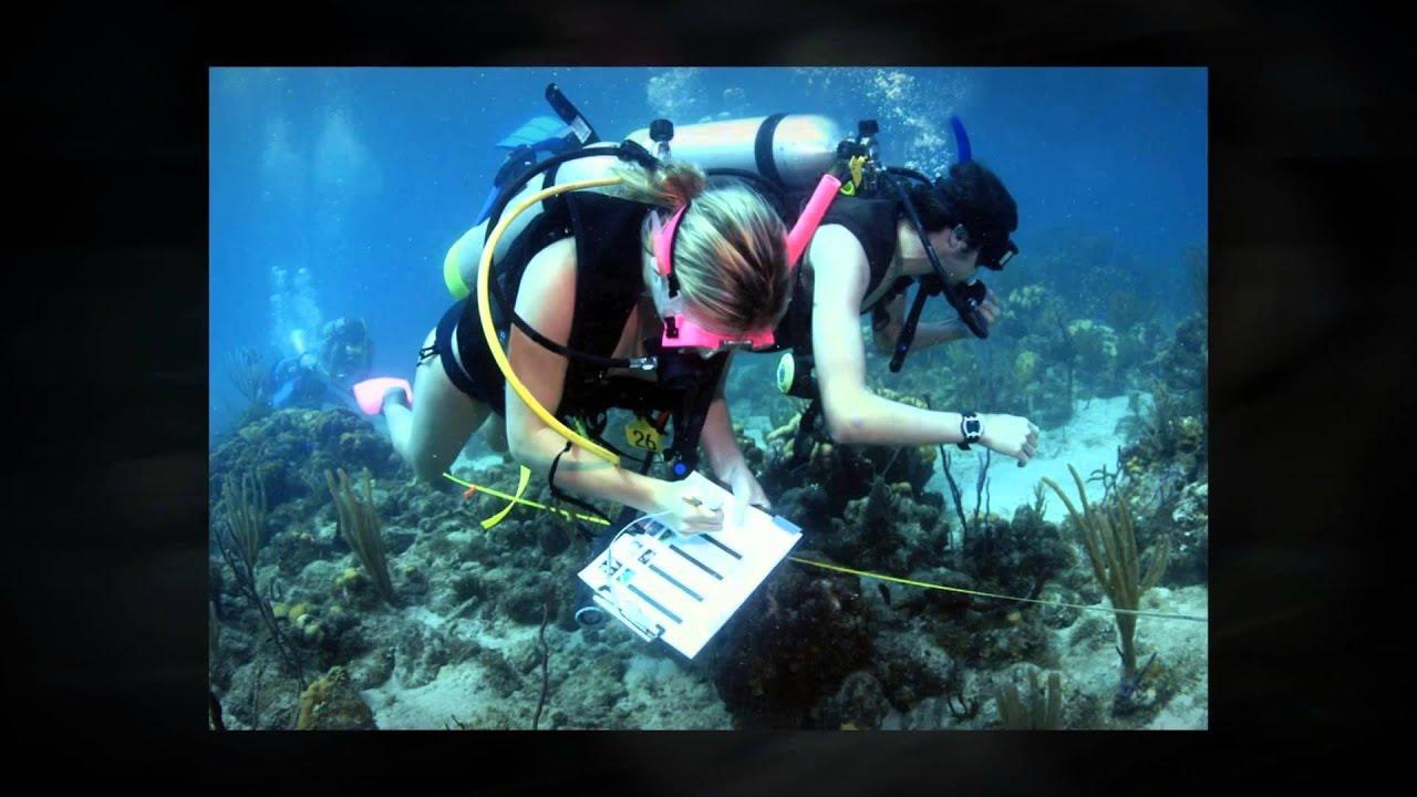 marine biologist salary
