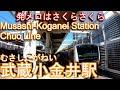【1924年(大正13年)観桜のため開業】武蔵小金井駅を歩いてみた 中央線 Musashi-Ko…