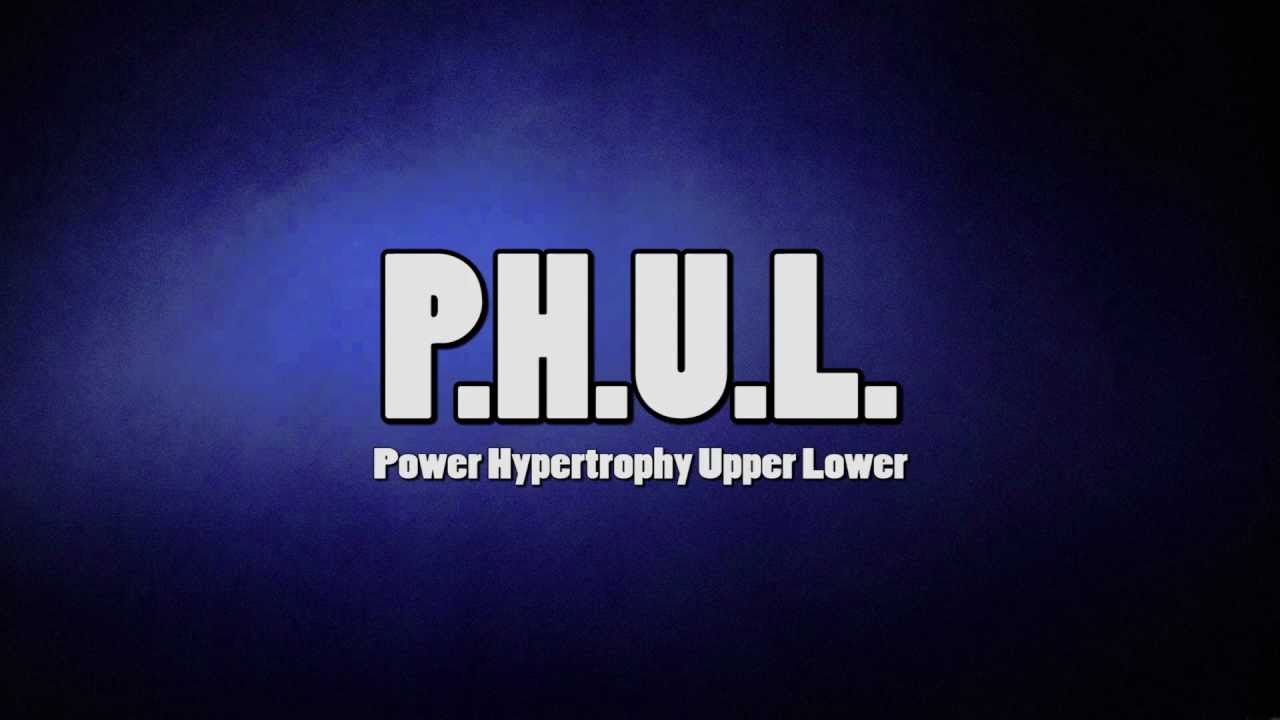 Power Hypertrophy Upper Lower (P H U L ) Workout | Muscle