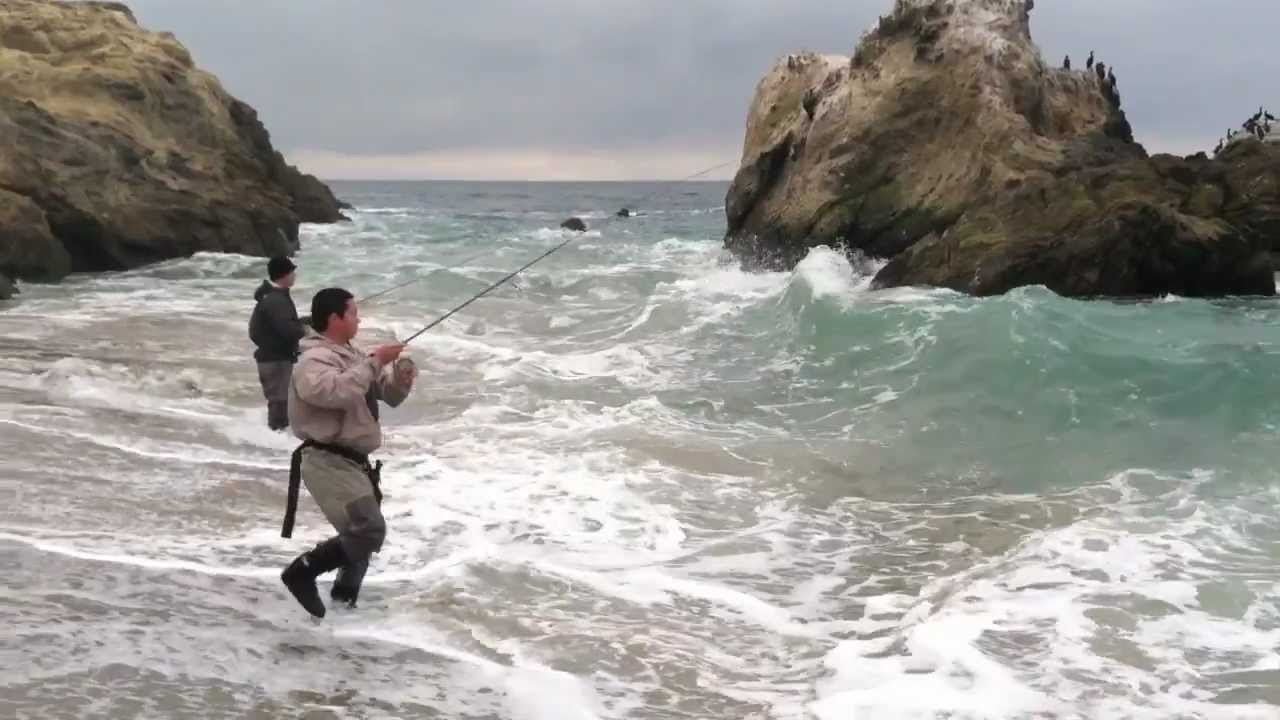 Hunting the giants 4 surf fishing southern california for Best places to fish in california