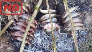 Естественная Жизнь В Камбодже   Простой Стиль Жизни В Камбодже   Как Жареная Рыба В Моей Деревне Ча