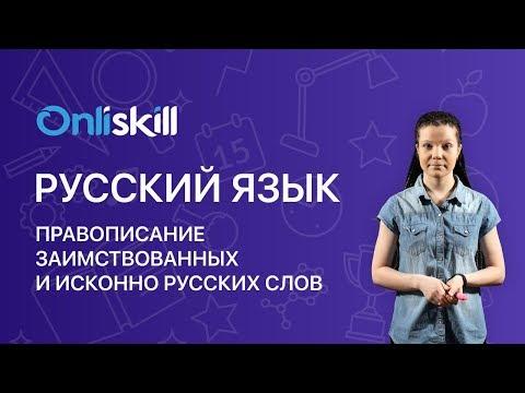 Как называются слова пришедшие в русский язык из других языков