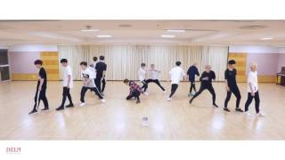 [mirrored] SEVENTEEN - DON'T WANNA CRY Dance Practice Video