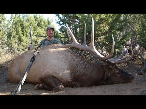 """Muzzleloader Bull Elk Hunt 381"""" - Nate Young - MossBack"""