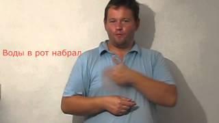 Фразеология русского языка № 4