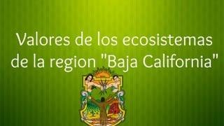 Valores de los ecosistemas de la región | Baja California