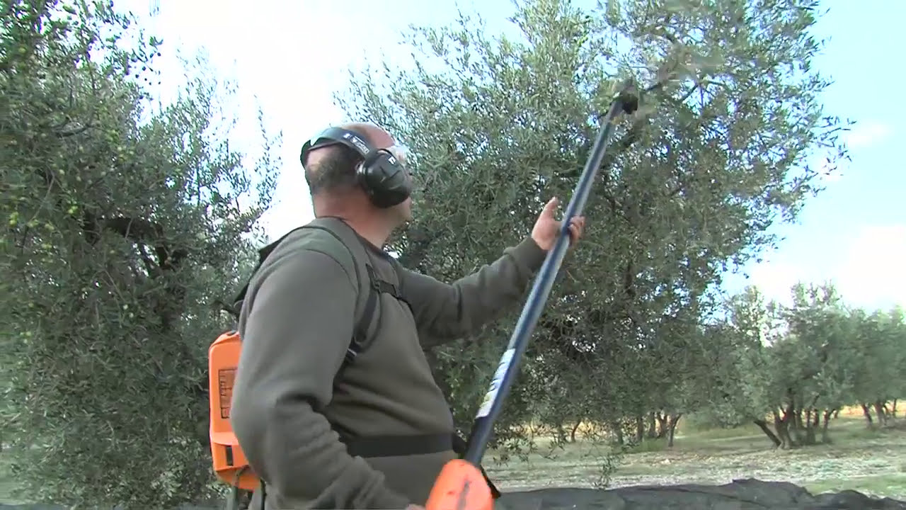 Olivion shaker rake - Pellenc | Specialized agriculture