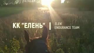 """КК """"Елень"""" - Elen' Endurance Team - конные пробеги"""