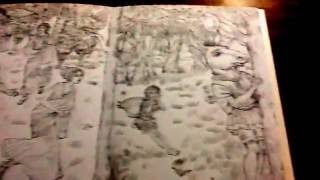 Midsummer Night's Dream - by Debra McFarlane, a Pictura Colouring Book - a quick flip through