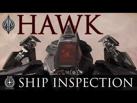 ANVIL HAWK! - Ship Inspection | Star Citizen
