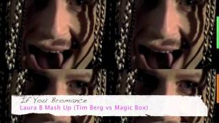 Download If You Bromance - Laura B Mash Up (Tim Berg vs Magic Box) MP3 song and Music Video