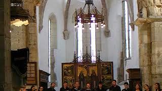 Prázsmár evangélikus vártemplom - Jugendbach kórus