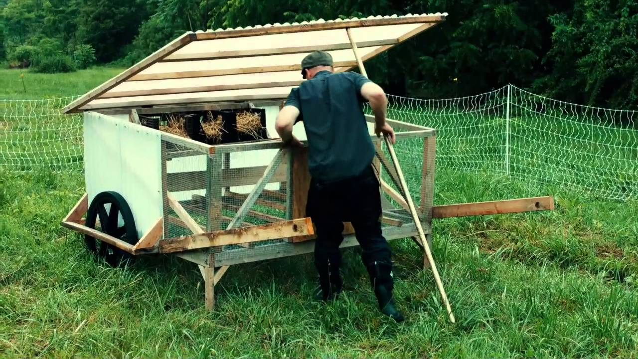 Diy chicken coops cutting feed costs 100 youtube for Diy movable chicken coop