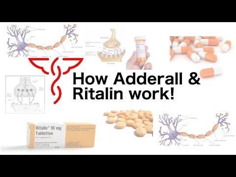 how-adderall-&-ritalin-work