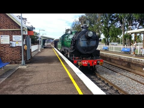 Transport for NSW Vlog No.588 Waratah