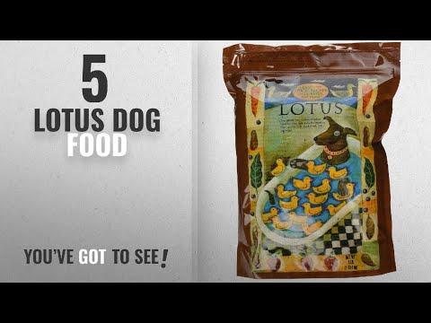 Top 5 Lotus Dog Food [2018 Best Sellers]: Lotus Dry Dog Food, 4 Lb., Duck And Sweet Potato