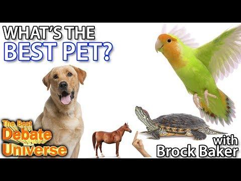 What's the best pet? Brock Baker - Best Debate in the Universe