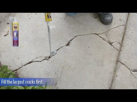 Consider, that Shaved asphalt curb repair that's
