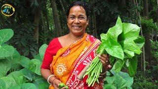 স্বাদে সব কচুর সেরা টক ঝাল বুনো কচুর এই সহজ রেসিপি || very tasty chatpata Wild Taro Leaf recipe