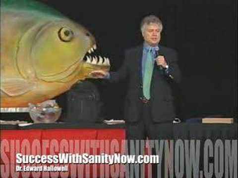 Dr. Edward Hallowell - Success With Sanity