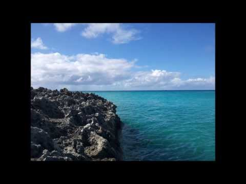 A Walk with the Anguilla National Trust - Part Four (Final) - Maundays Bay