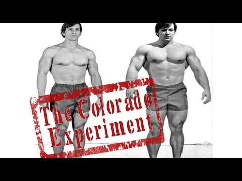 Download Youtube: The Colorado Experiment - How Casey Viator Gained 63 Pounds of Muscle in 28 Days