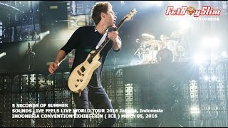 5 SOS  - SHE LOOKS SO PERFECT live in BSD CITY, 2016 Jakarta Indonesia 5 SECONDS OF SUMMER