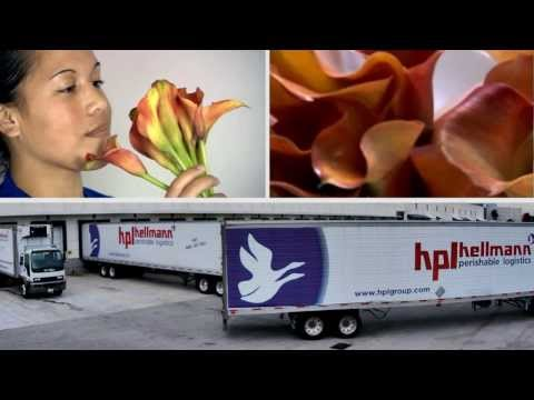 Hellmann Worldwide Logistics, Perishable Logistics