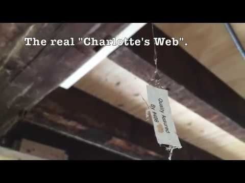We found something in our sewer pipe... Episode 48 - 1806 Stone House